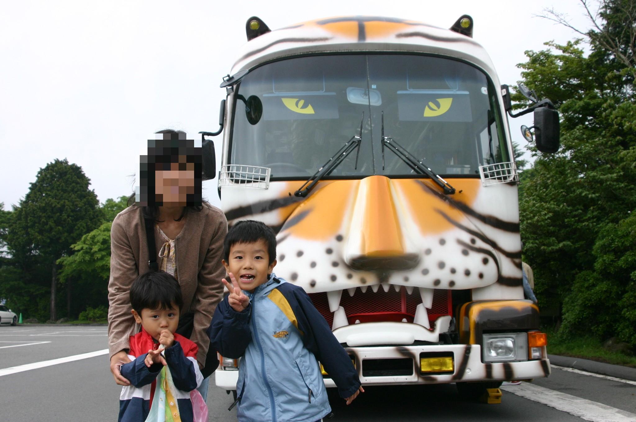 Safaribus3